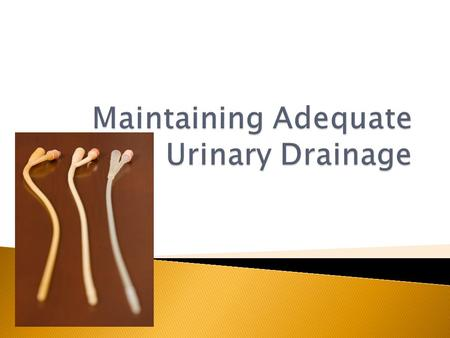  Urine clears the body of waste material  -aids in the balance of electrolytes  -conditions that interfere with urinary  drainage may create a health.