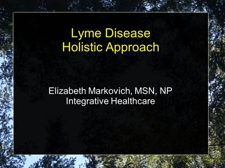 Lyme Disease Holistic Approach Elizabeth Markovich, MSN, NP Integrative Healthcare.