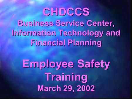 CHDCCS Business Service Center, Information Technology and Financial Planning Employee Safety Training March 29, 2002.