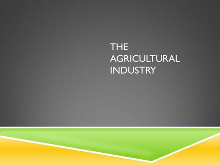THE AGRICULTURAL INDUSTRY. INTRODUCTION  Agriculture can be looked at as a system. The important input are seeds, fertilisers, machinery and labour.