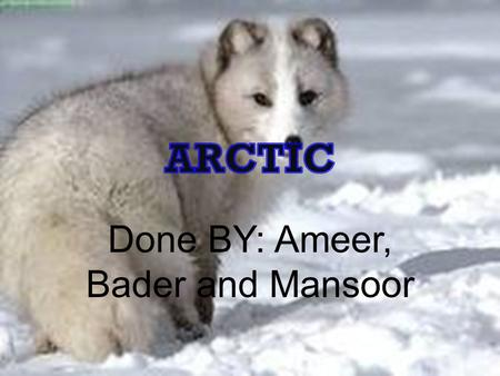 Done BY: Ameer, Bader and Mansoor. The Arctic Biomes Map.