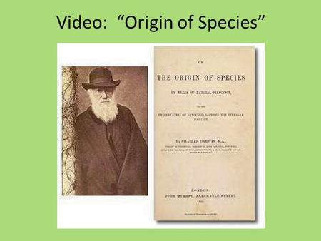 "Video: ""Origin of Species"". 1. How is evolution like a ""tree of life?"" All modern animals and plants came from common ancestors like different twigs on."