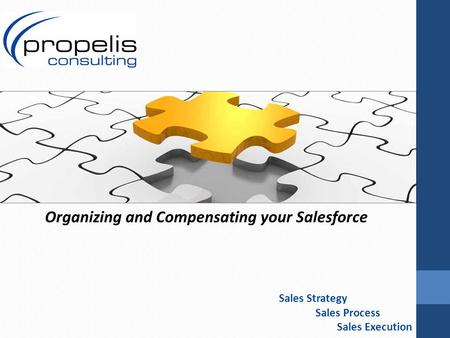 Sales Strategy Sales Process Sales Execution Organizing and Compensating your Salesforce.