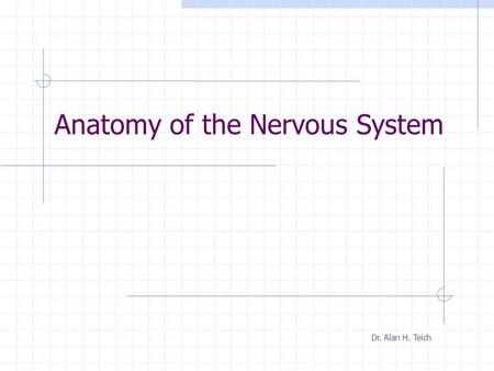 Anatomy of the Nervous System Dr. Alan H. Teich.