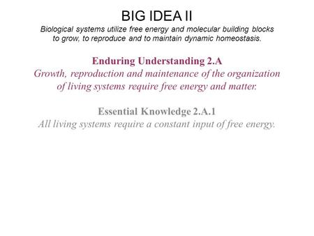 BIG IDEA II Biological systems utilize free energy and molecular building blocks to grow, to reproduce and to maintain dynamic homeostasis. Enduring Understanding.