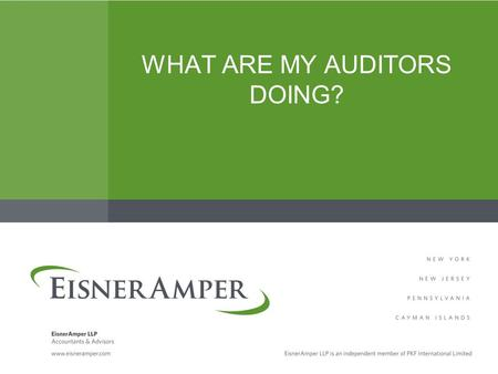 WHAT ARE MY AUDITORS DOING?. Your Presenter Dianne Batistoni, CPA –EisnerAmper Insurance Group Audit Partner – Bridgewater, NJ –908-218-5002, ext. 2239.