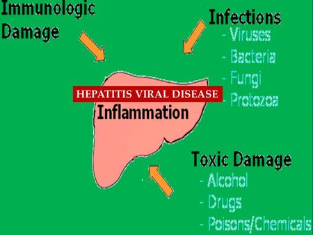 { HEPATITIS VIRAL DISEASE. Alcoholic Hepatitis The inflammation of the liver caused by the long-term heavy intake of alcohol. Symptoms include enlargement.