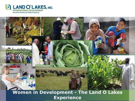 Women in Development - The Land O Lakes Experience.