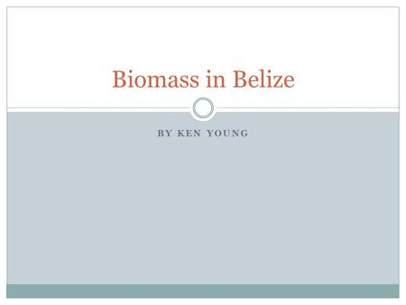 BY KEN YOUNG Biomass in Belize. What is Biomass? Organic material from plants and animals Wood, charcoal, biofuel, and everything in-between Used as energy.
