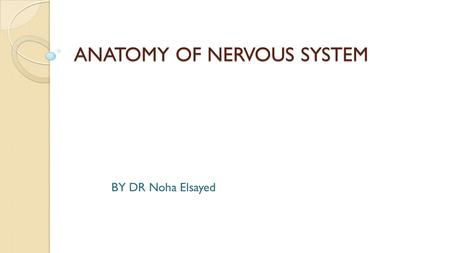 ANATOMY OF NERVOUS SYSTEM BY DR Noha Elsayed. INTRODUCTION DEFINITION The system which controls the sensory and motor functions of the body is called.