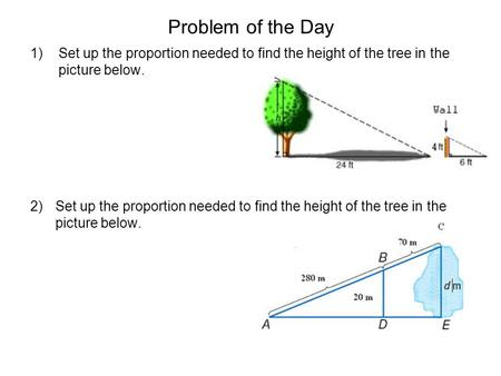 Problem of the Day Set up the proportion needed to find the height of the tree in the picture below.