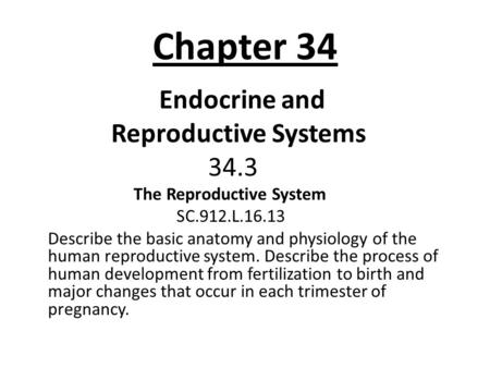 Chapter 34 Endocrine and Reproductive Systems 34.3