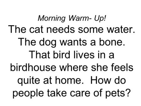 Morning Warm- Up! The cat needs some water. The dog wants a bone. That bird lives in a birdhouse where she feels quite at home. How do people take care.