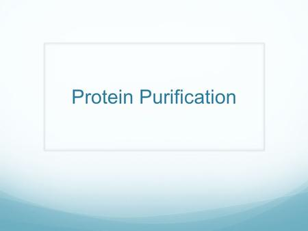 Protein Purification. Why purify Proteins? Characterize Function Activity Structure Study protein regulation and protein interactions Use in assays Produce.