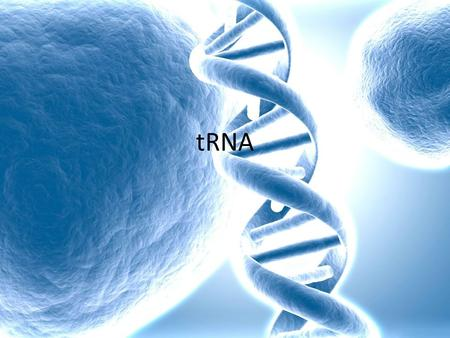 TRNA. Transfer RNA (tRNA) is a small molecule, existing as a single- strand that is folded into a clover-leaf shape.