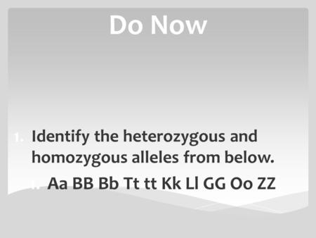 Do Now 1.Identify the heterozygous and homozygous alleles from below. 1.Aa BB Bb Tt tt Kk Ll GG Oo ZZ.