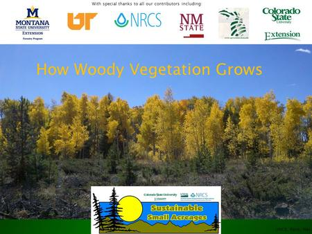 UNCE, Reno, Nev. How Woody Vegetation Grows With special thanks to all our contributors including:
