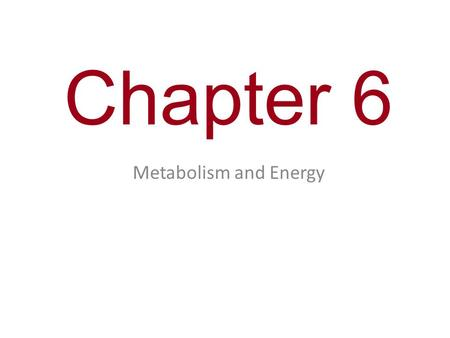 Chapter 6 Metabolism and Energy.