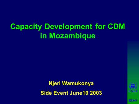 Capacity Development for CDM Capacity Development for CDM in Mozambique Njeri Wamukonya Side Event June10 2003.