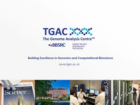 TGAC Training Coordination for the BBSRC Strategically-Funded Institutes Tanya Dickie: Bioinformatics & Biomathematics Training.