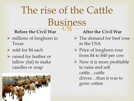  The rise of the Cattle Business Before the Civil War  millions of longhorn in Texas  sold for $4 each  raised for leather or tallow (fat) to make.