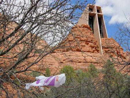 Sedona's Reusable Bag Initiative Background ~ Began with query from Dr. Bell Citizen Committee formed August '08 Researched Plastic and Paper Disposable.