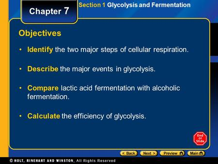 Section 1 Glycolysis and Fermentation