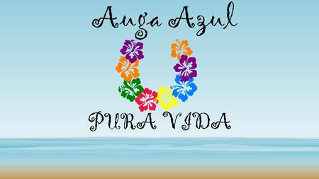 Auga Azul PURA VIDA. Fun Fact: Pura Vida means, Pure life, and people like to say that it is the unofficial slogan of Costa Rica.