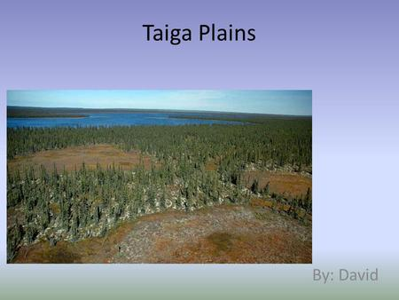 Taiga Plains By: David. Climate The taiga plains have a very short summer The summer temperature is usually around 7ºC in the north to 14ºC in the south.
