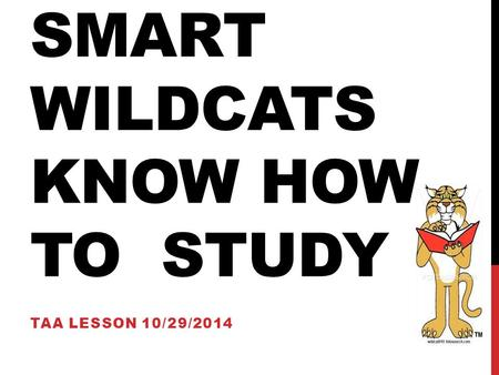 Smart Wildcats know how to Study