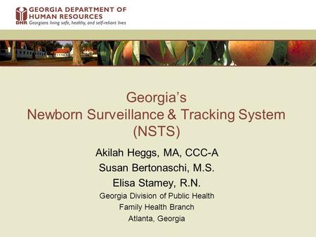 Georgia's Newborn Surveillance & Tracking System (NSTS) Akilah Heggs, MA, CCC-A Susan Bertonaschi, M.S. Elisa Stamey, R.N. Georgia Division of Public Health.