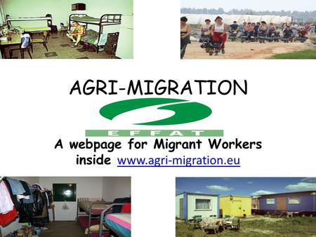 AGRI-MIGRATION WEBSITE A webpage for Migrant Workers inside www.agri-migration.eu www.agri-migration.eu.