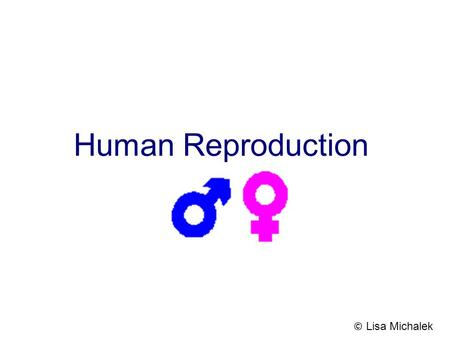 Human Reproduction © Lisa Michalek.