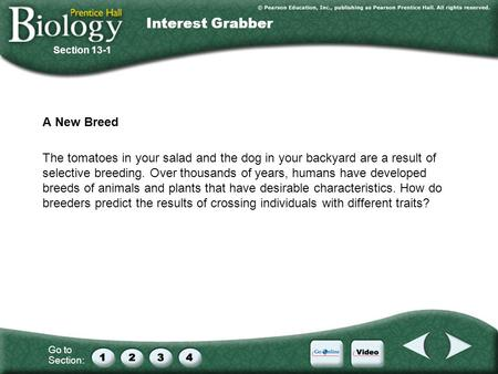 Interest Grabber A New Breed