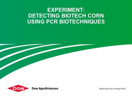 EXPERIMENT: DETECTING BIOTECH CORN USING PCR BIOTECHNIQUES.