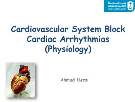 Cardiovascular System Block Cardiac Arrhythmias (Physiology)