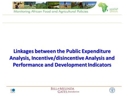 Linkages between the Public Expenditure Analysis, Incentive/disincentive Analysis and Performance and Development Indicators.
