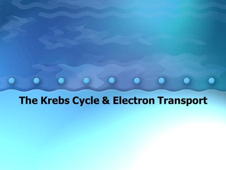The Krebs Cycle & Electron Transport. Cellular Respiration Cellular Respiration: energy- releasing pathways within a cell. Because the pathways require.