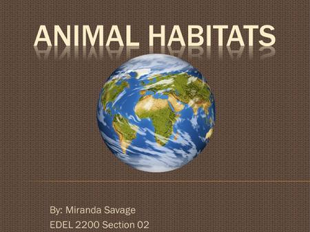 By: Miranda Savage EDEL 2200 Section 02.  Animals that live in the Desert:  Camels  Desert Tortoise  Fox  Mountain Lions  Meerkats  Military.