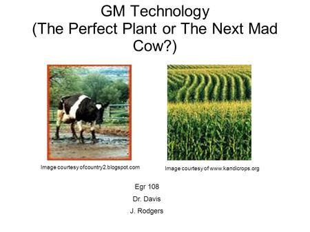 GM Technology (The Perfect Plant or The Next Mad Cow?) Image courtesy ofcountry2.blogspot.com Image courtesy of www.kandicrops.org Egr 108 Dr. Davis J.