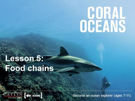 Lesson 5: Food chains Become an ocean explorer (ages 7-11)