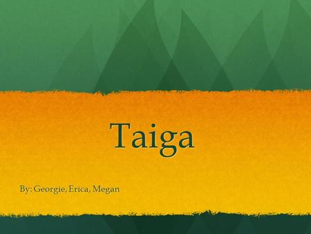 Taiga By: Georgie, Erica, Megan. Defining characteristics of Taiga Taiga is the biome of the needle leaf forest and it's also known as the boreal forest.