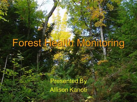 Forest Health Monitoring Presented By Allison Kanoti.