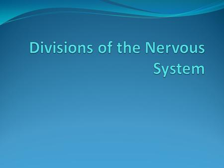 The Nervous System Nervous System – The entire network of neurons in the body. Includes: Central Nervous System Peripheral Nervous System Their subdivisions.