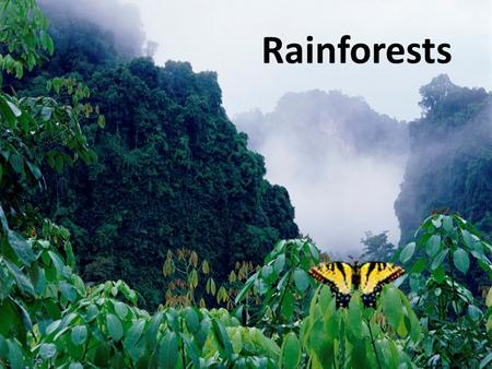 Rainforests. Two Types of Rainforests Tropical – Located along the equator – 80-400 inches of rain per year – Temperature between 70-85 degrees Temperate.