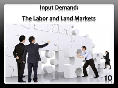 The Labor and Land Markets