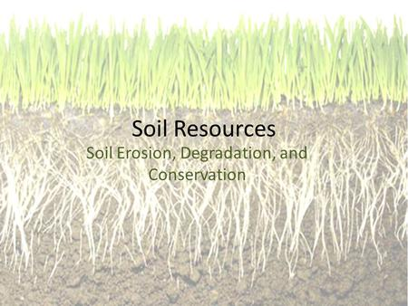 Soil Resources Soil Erosion, Degradation, and Conservation.