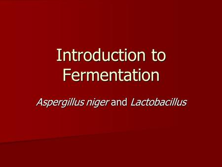 Introduction to Fermentation