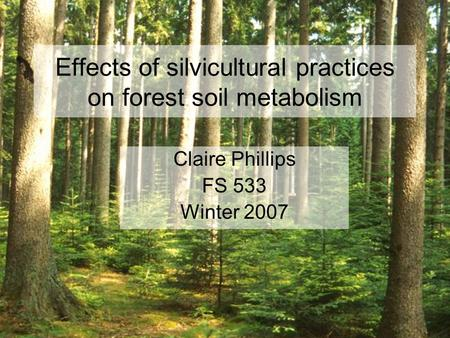 Effects of silvicultural practices on forest soil metabolism Claire Phillips FS 533 Winter 2007.