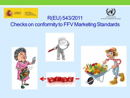 R(EU) 543/2011 Checks on conformity to FFV Marketing Standards.